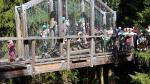 auf der Wackelbrücke