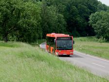 Wander- und Radbusse