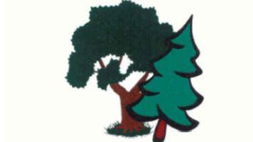 Waldgenossenschaft Südschwarzwald